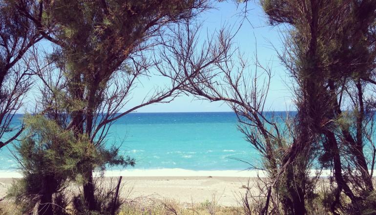 Fotografía filtros instagram: valencia